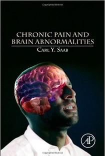 کتاب لاتین درد مزمن و ناهنجاری های مغز (2014)