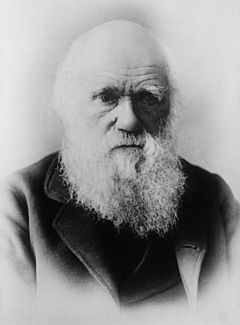 چالز داروین