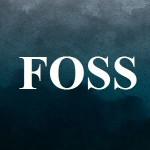 پرسشنامه ترس از موفقیت (FOSS)
