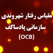 پرسشنامه رفتار شهروندي سازماني پادساکف (OCB)