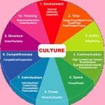پرسشنامه فرهنگ سازمانی دنیسون (OCI)