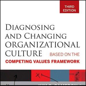 کتاب لاتین تشخیص و تغییر فرهنگ سازمانی