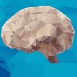 نوروسایکولوژی: رشتهای جدید برای شناخت بهتر انسان