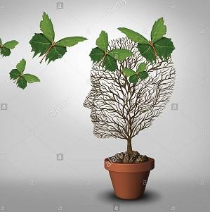 معرفی ده مقاله پراستناد روانپزشکی از سال 2006 تاکنون
